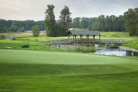 picture of sand lilies  - A golf course green with a blue pin and a bridge pond and trees in the background - JPG