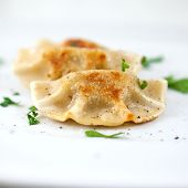 Pierogi.Traditional Polish Dish