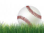 Baseball Ball on Grass. 2D Graphics. Computer Design.