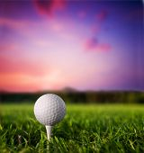 stock photo of golf  - Golf ball on tee - JPG