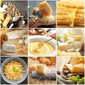 Collage with different kinds of cheese poster