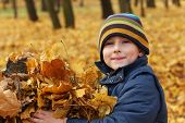 Happy 6 years old child and autumn leaves in a park. Kid has fun playing in fall leaves.