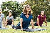 Mature healthy people doing yoga at park. Group of multiethnic people exercising on green grass with poster