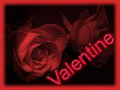 Valentine 5