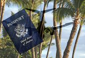 Foreign travel to Hawaii. US Passport, airliner and palms at a beach in composite.