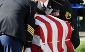 SAN DIEGO, CA - OCTOBER 29, 2008: Fort Rosecrans National Cemetery. Honor Guard carries a casket dur
