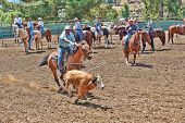 ESCONDIDO, CALIFORNIA - JULY 4: Cowboys participate in the Independence Day Team Roping Competition
