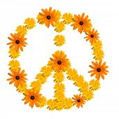 Peace symbol made from orange flower calendula