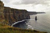 Wild Atlantic Way   Cliffs Of Moher poster