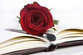 Lovely red rose and pen on a classic note book