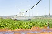 a Modern irrigation system watering a farm field