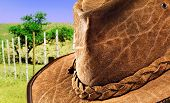 Close up of a crocodile skin leather hat in nature
