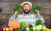 Farmer With Homegrown Vegetables Harvest. Organic Pest Control. Excellent Quality Harvest. Man With  poster