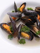 plate of mussel with wine sauce