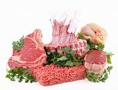 isolated assortment of raw meats