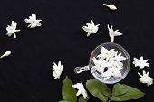 White Flowers Jasmine Flora Local Of Asia Float On Water In Glass Arrangement Flat Lay Style On Back poster