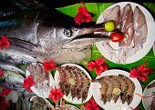 Langostinos, calamares y peces