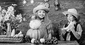 Children Play Vegetables Wooden Background. Elementary School Fall Festival Idea. Kids Girl Boy Wear poster
