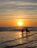 Surfing Couple At Sunset