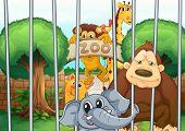 Ilustración de un zoológico y los animales en la naturaleza hermosa