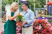 Man looking for some help in the garden centre holding a plant