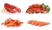 Set of sea food on a white background. Crab, shrimps, lobster, salmon.