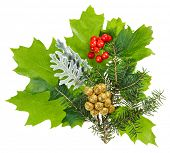 Weihnachten-Komposition mit Ilex, Tanne und Beeren, isolated on white