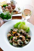 Bourguignonne snail au gratin. Escargots de Bourgogne (snails with herbs butter)