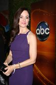 LOS ANGELES - SEP 28:  Madeleine Stowe arrives at the ABC Sunday Night Event at Lexington Social Clu