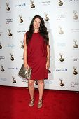 LOS ANGELES - SEP 21:  Julia Ormond arrives at the Primetime Emmys Performers Nominee Reception at S