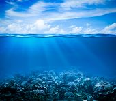 Underwater coral reef seabed view with horizon and water surface split by waterline
