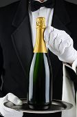 Closeup of a sommelier holding a champagne bottle on a serving tray in front of his torso. Wan is wearing a tuxedo and is unrecognizable. Vertical Format.