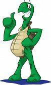 Turtle - Thumbs Up!