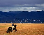 stock photo of gaucho  - A gaucho riding his horse in Patagonia Argentina - JPG