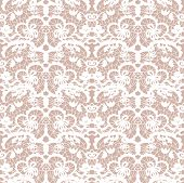 Lace Vector Fabric Seamless Pattern