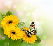 Nature background with yellow beautiful flowers and butterfly. Vector illustration