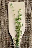 cooking with fresh Thyme herbs