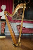 Ancient harp in the stylish interior. Amboise, France