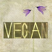pic of vegan  - Textured earthy background image and design element depicting the word  - JPG
