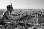 stock photo of gargoyles  - Notre dame gargoyle overlookes the Paris skyline - JPG