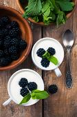 Two Cups Of Creamy Yogurt With Blackberries