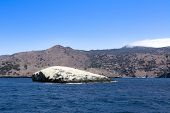 A classic landmark at Catalina Island, California and famous scuba diving site called Bird Rock at C