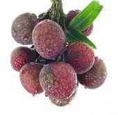 Fresh Of Litchi Fruit Isolated On White Background