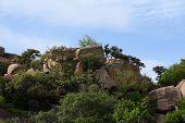 Rocky Landscape At Enchanted Rock Park
