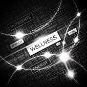 WELLNESS. Word cloud concept illustration. Graphic tag collection. Wordcloud collage with related tags and terms.