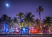 MIAMI, FLORIDA - JANUARY 6, 2014: Palm trees line Ocean Drive. The road is the main thoroughfare thr