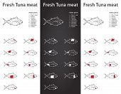 image of kama  - Fresh Tuna meat parts Icons for packaging and info - JPG