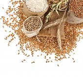 groats seed meal and grains in bags close up corner border  isolated on a white background