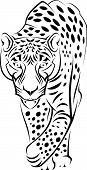 Hermoso jaguar salvaje