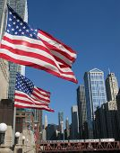American flags in the wind downtown Chicago